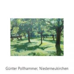 03_Pollhammer_Niederneukirchen.jpg